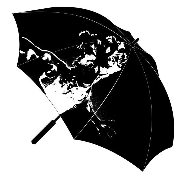 TLOU_Umbrella